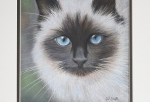 Blue Eyes by Gill Smith