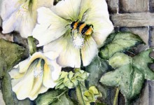 Bumblehock by Gill Smith