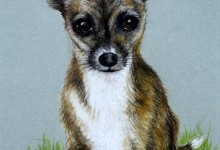 """14"""" x11"""" presented in a double mount £65 +p&p"""